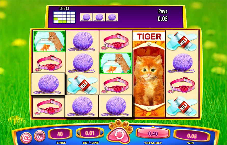 OMG Kittens Slots - Free Slot Machine Game - Play Now