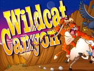 Wild Cat Canyon